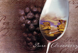 wine glass Pure Discovery image